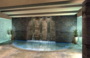 Park Hyatt, Beaver Creek